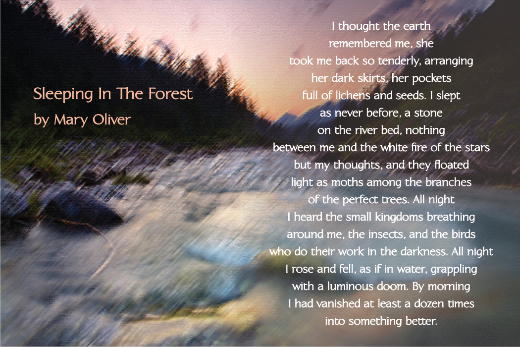 mary-oliver-poem